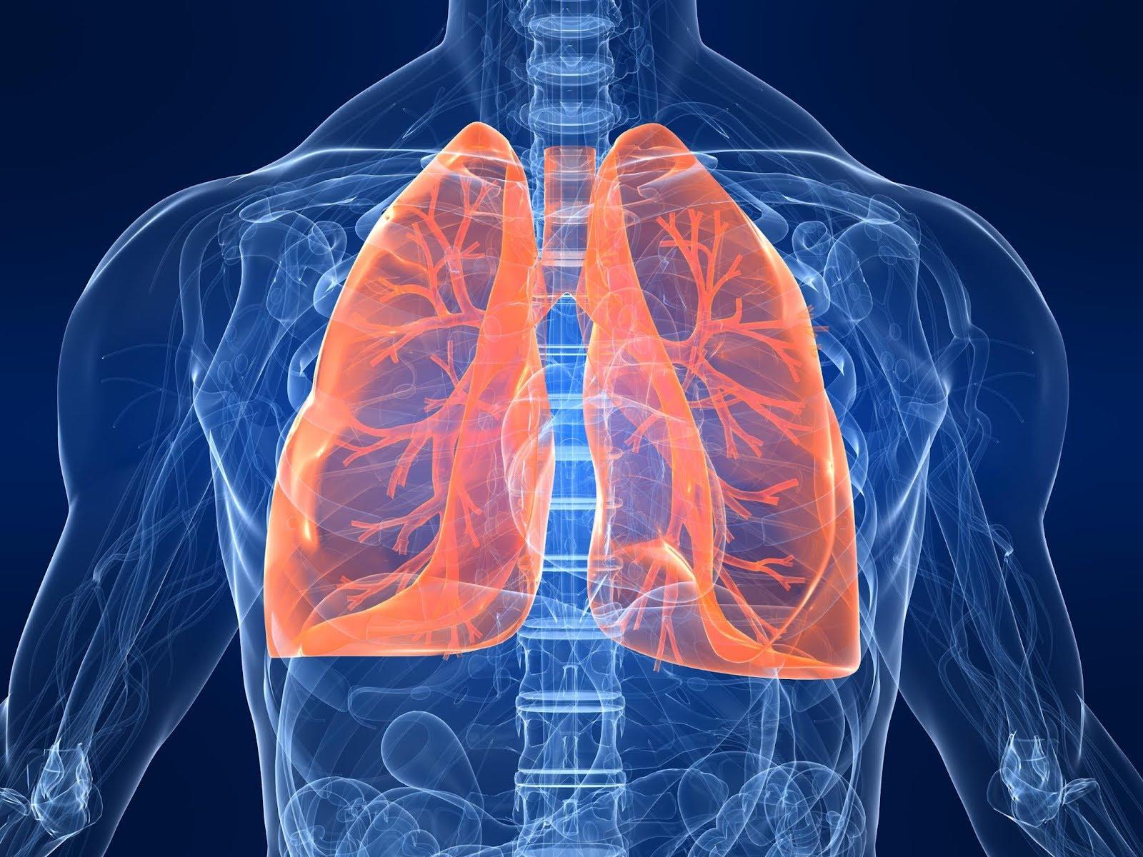 Akciğerleri 3 günde temizleyen yöntem